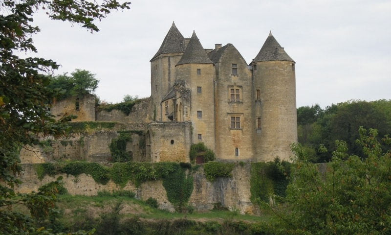 castle of salignac