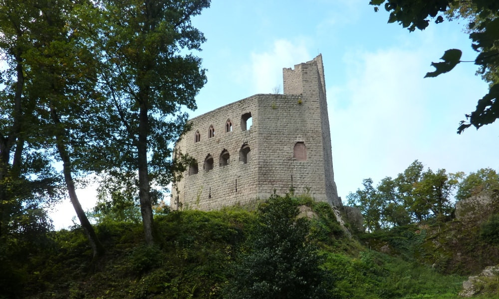 castle of spesbourg