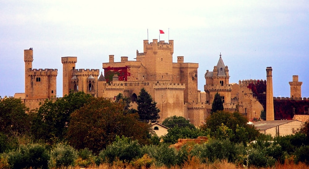 palace of the kings of navarre of olite